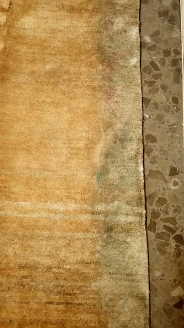 Restauración alfombra Moho antes