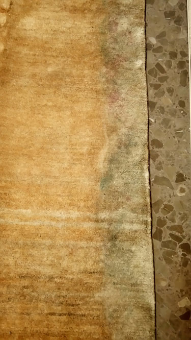 Restauraci n alfombra moho expo alfombra ir n - Restauracion de alfombras ...