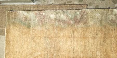 Restauración moho en alfombra