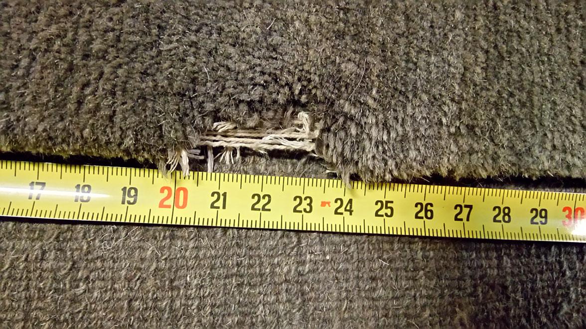 Restauración alfombra mordedura de perro antes