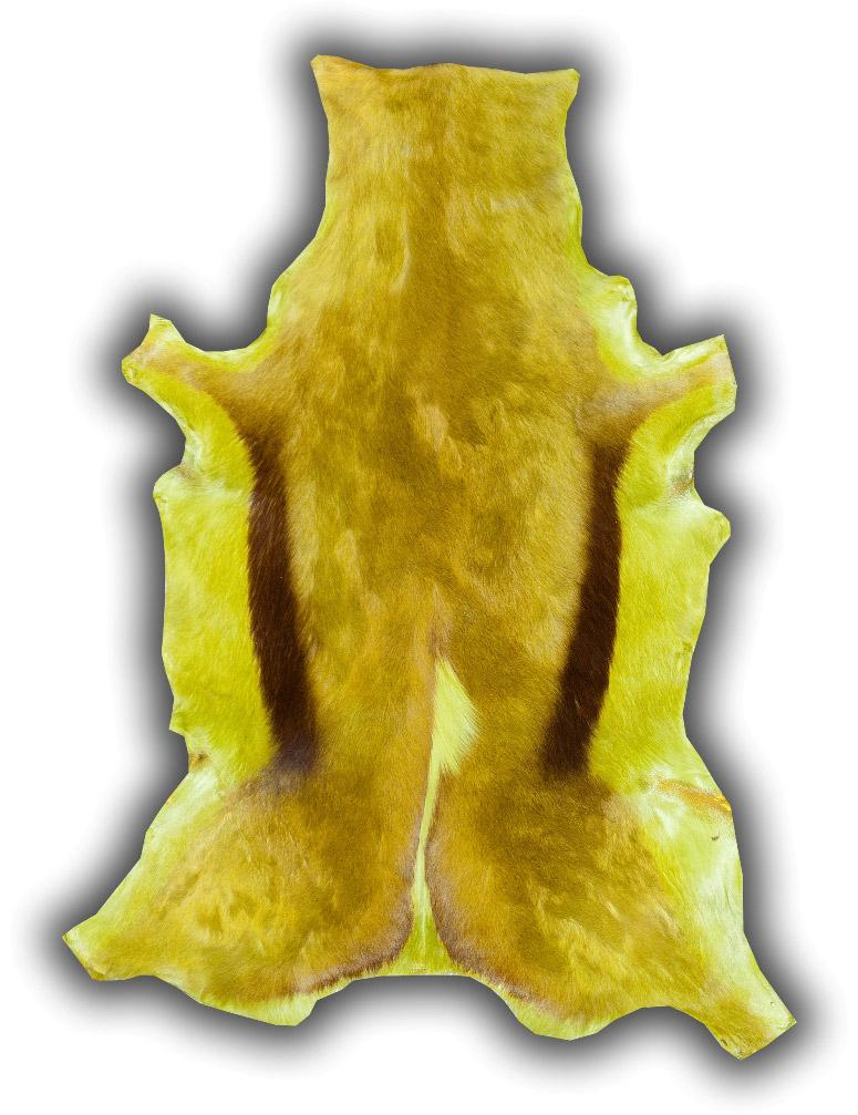 Gacela verde